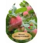 Яблоня Аркад розовый (раннелетний, зеленовато-желтый с размытыми красными полосами)