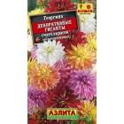 Цветы Георгина Декоративные Гиганты, смесь 0,2 г ц/п Аэлита