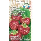 ягоды Клубника Сластена F1 0,04 г ц/п Седек (ремонтантная)