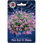 Цветы Пеларгония Рич Аут Пинк F1, амп. плющелистная 5 шт ц/п Биотехника