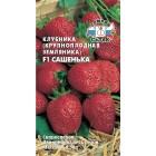 ягоды Клубника Сашенька F1 15 шт ц/п Седек (ремонтантная)